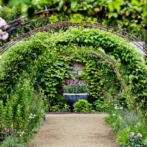 rose archway path