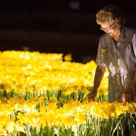 "London's ""Garden of Light"" art installation"