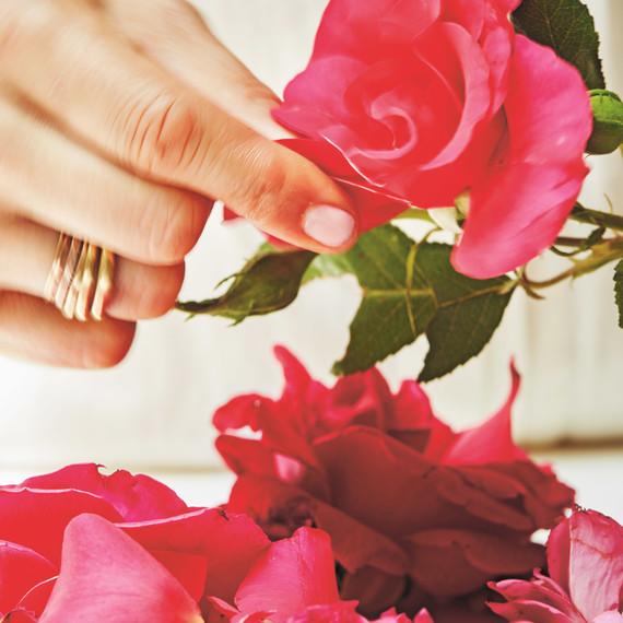 shiva rose whole beauty flower petals