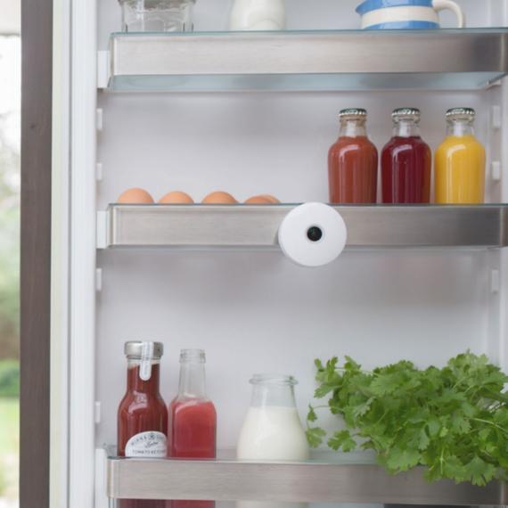 smarter-fridge-camera-kitchen-tech-jan2017.png (skyword:384065)