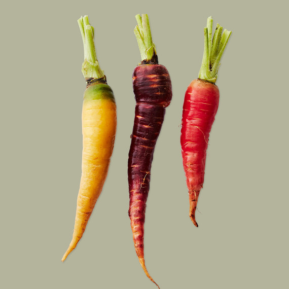 various carrots healthy appetite