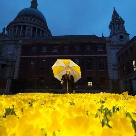 garden-of-light-daffodils-art-installation-2.jpg