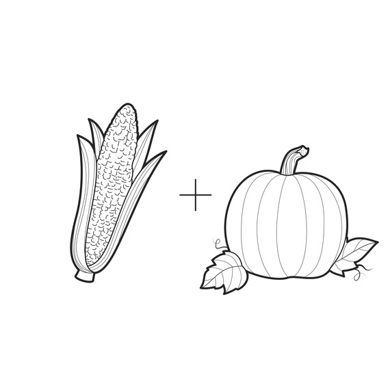 ask-martha-corn-and-pumpkins-illustration-0314.jpg