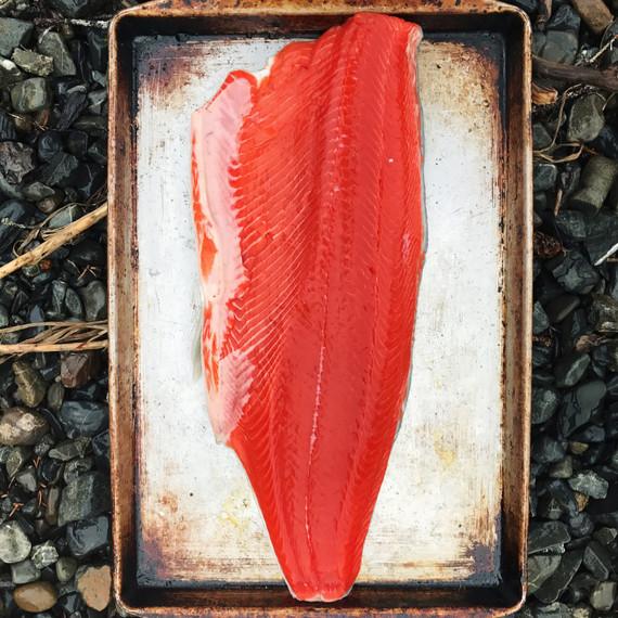 sockeye salmon fillet grill drifters fish