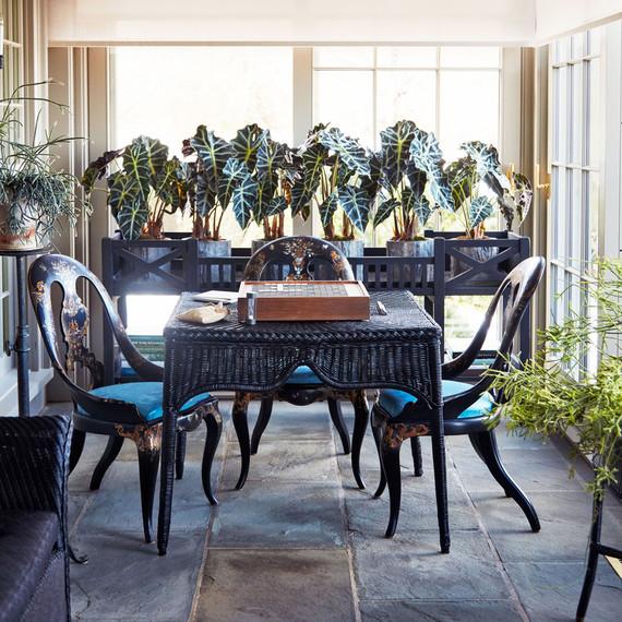 黑色柳条家具和植物