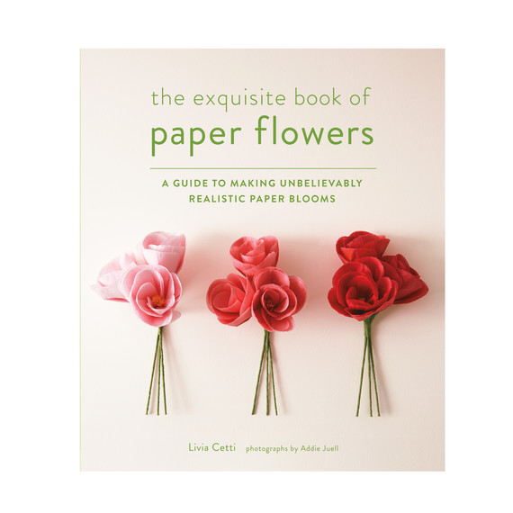 exquisite-book-of-paper-flowers-91003j-ms111099.jpg