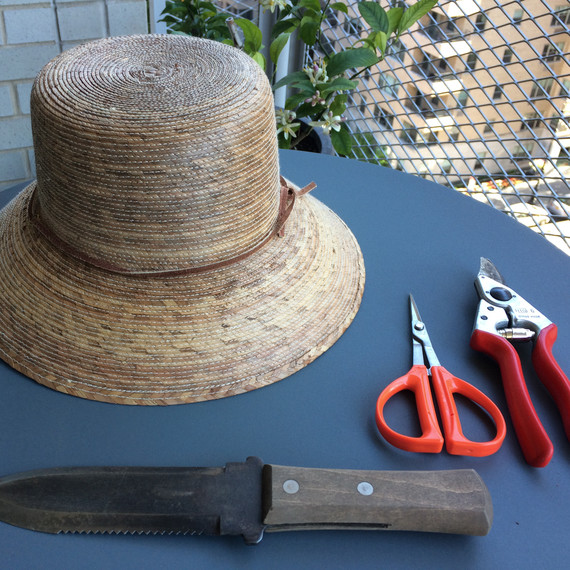 hat knife clippers