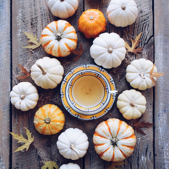 herbal tea surrounded by pumpkins fall