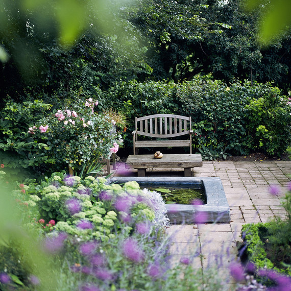 Gardening Tips That Make Creating a More Private Space Simple