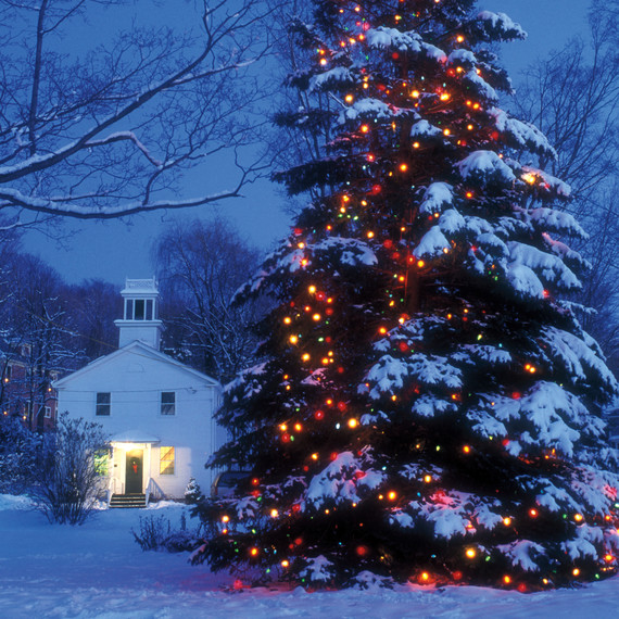 large-outdoor-christmas-tree-lights-s111579-a6e2e0.jpg & Let There Be Lights | Martha Stewart