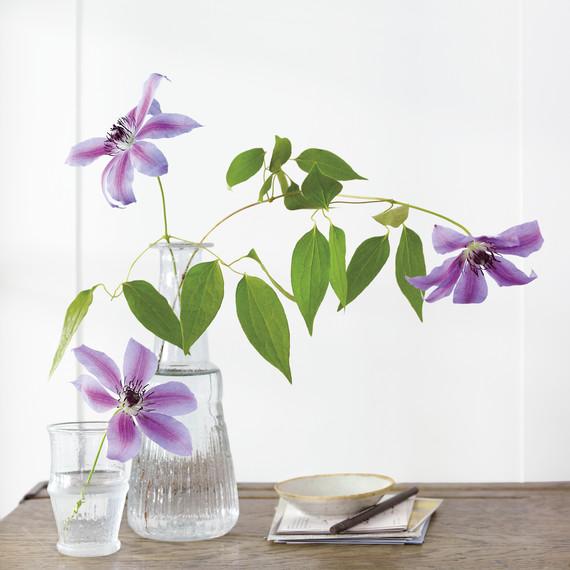 flowers-vase-md110119-msl-d110119-nnn-2013-0327-236.jpg
