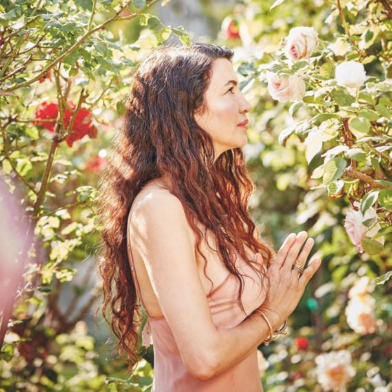 shiva rose whole beauty garden