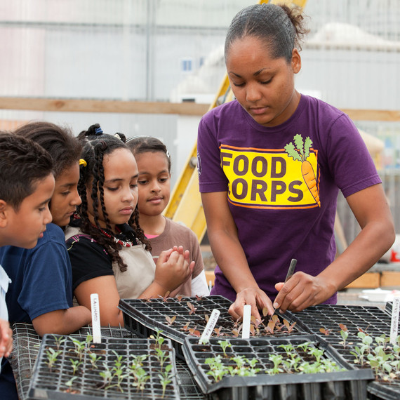 foodcorps-ma-boston-stephanie-many-kids-seedlings-0714.jpg