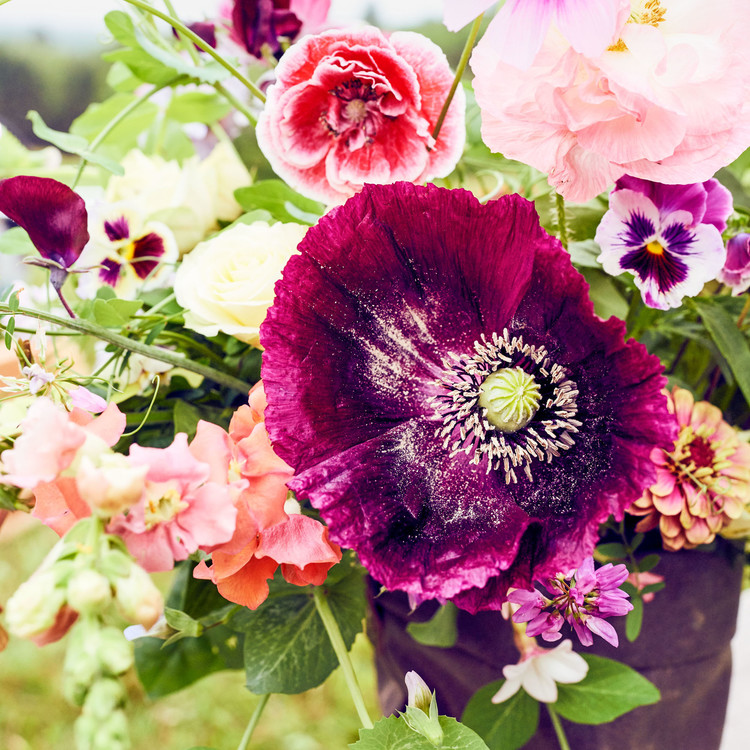 flowers vermont