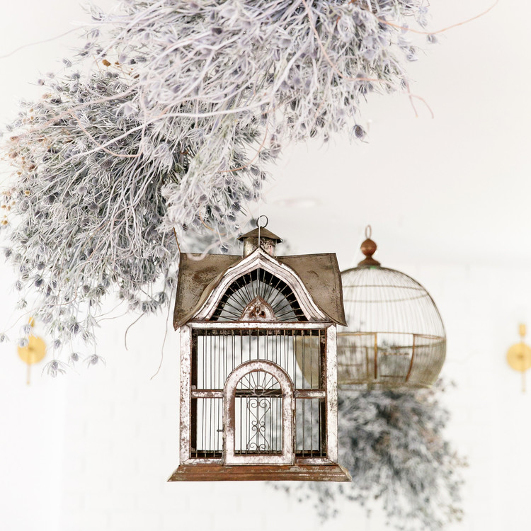 haunted movie house birdcages and white branches decor
