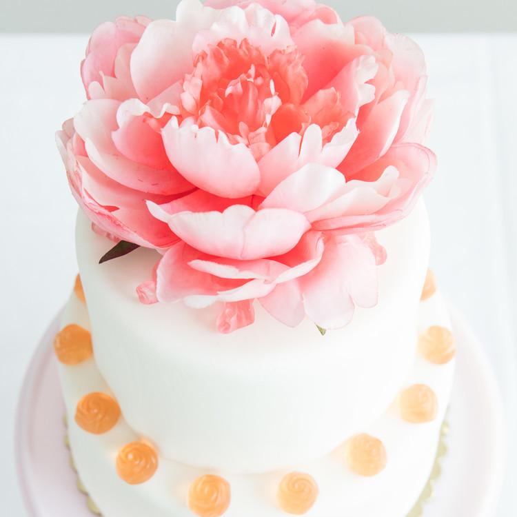 Lets Flamingle Cake overhead shot