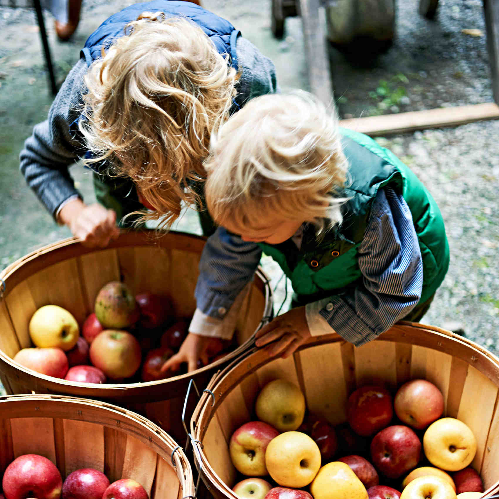 kids going through apple basket