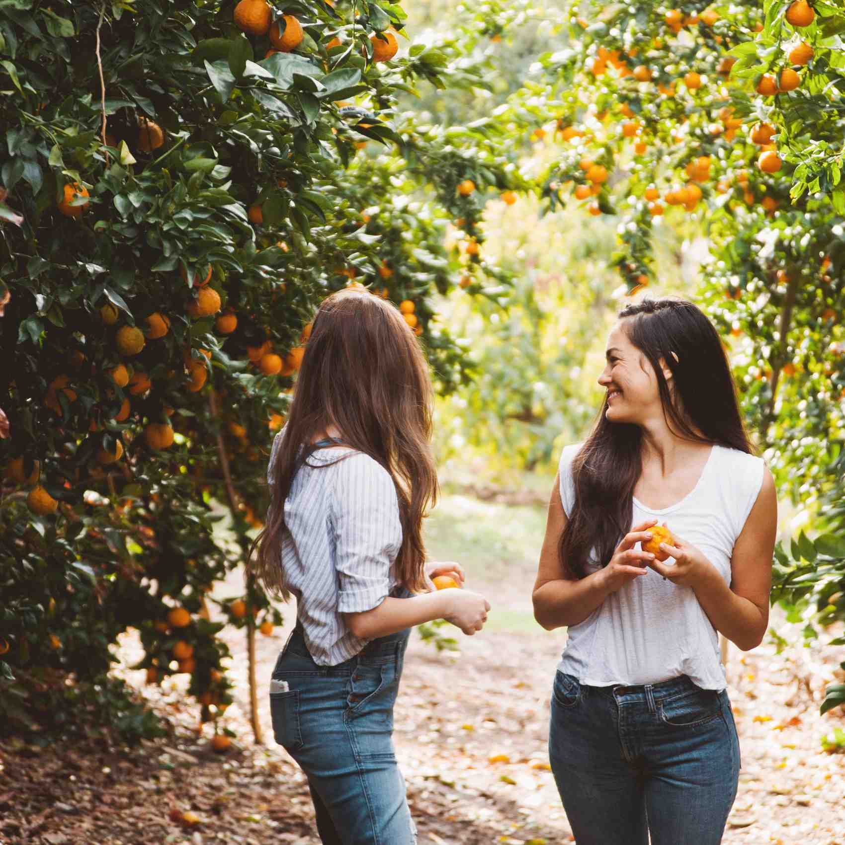 A Sweet Escape: Hosting the Most Magical Weekend Getaway in Ojai, California